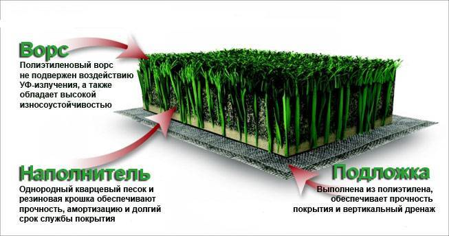 Как сделать газон на даче своими руками: выбор травы и пошаговая инструкция обустройства
