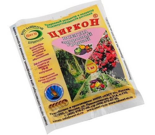Циркон – один из лучших стимуляторов роста растений