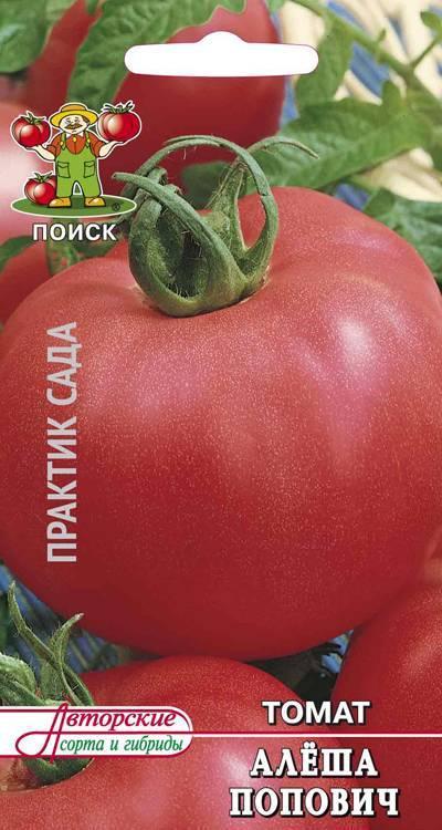 Описание сорта томата алеша попович — как поднять урожайность