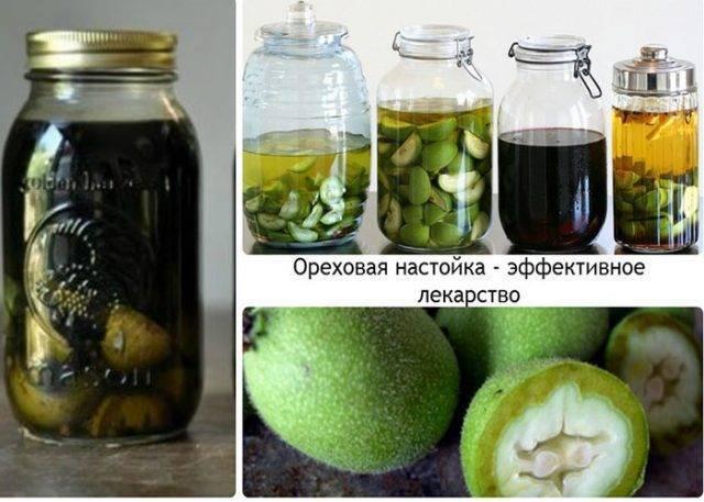Настойка грецкого ореха: как сделать её из перегородок?