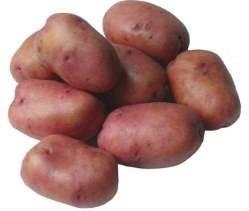 Картофель брянский деликатес: характеристики сорта, отзывы