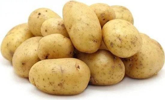 Ранние сорта картофеля для подмосковья: фото с описанием