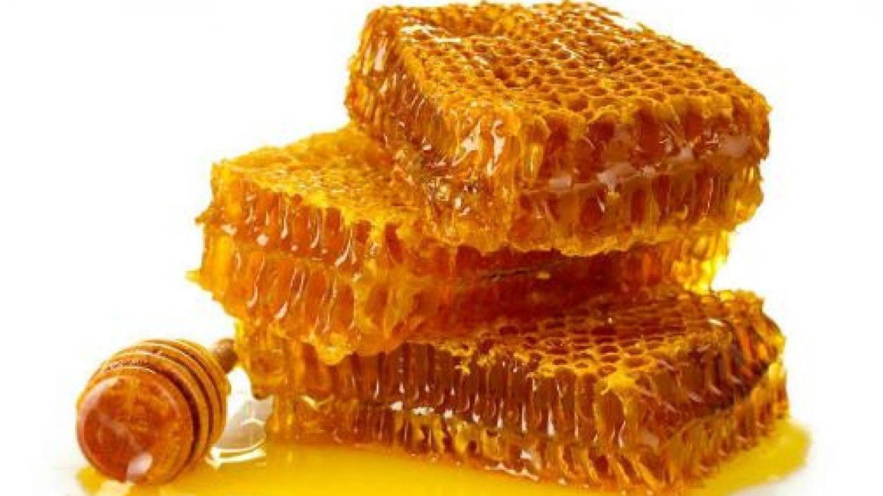 Пчелиный воск – свойства и применение