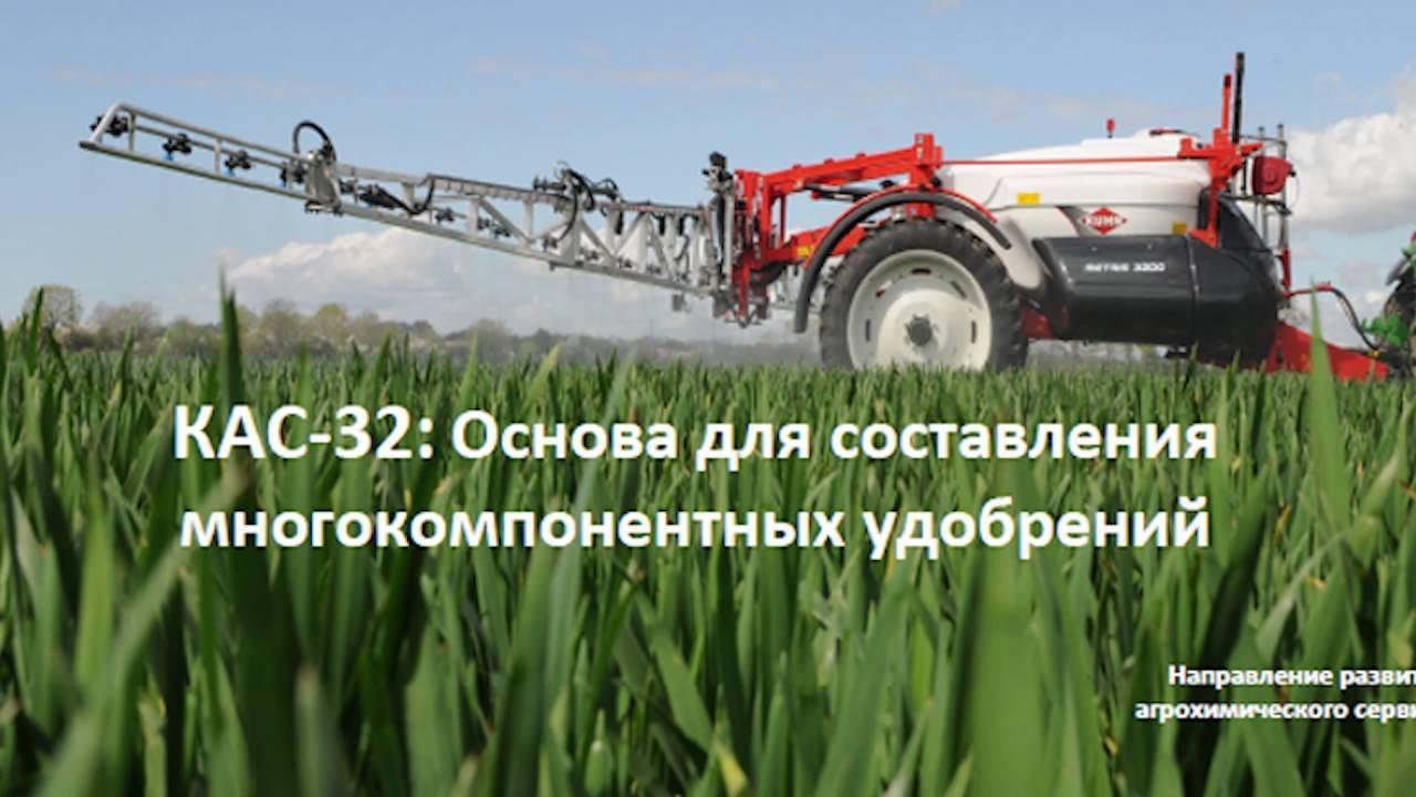 Подкормка озимой пшеницы весной, весенняя подкормка озимой пшеницы