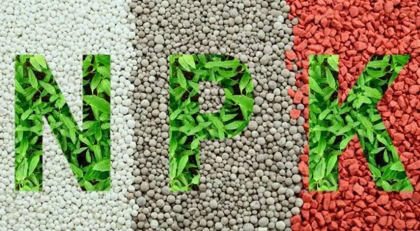 Удобрение кемира – отличная эффективность и доступные цены