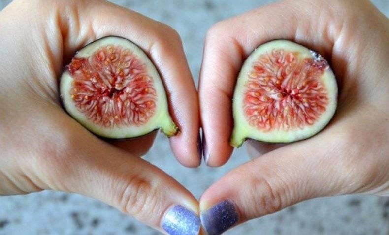 Инжир: полезные свойства и противопоказания, рецепт от кашля