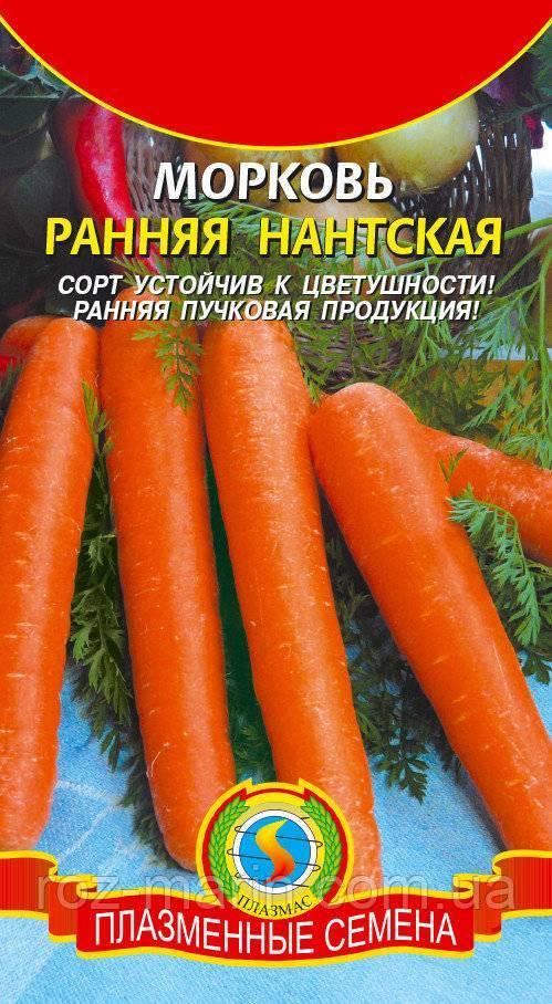 Морковь ярославна описание сорта фото отзывы
