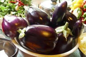 Баклажан чёрный принц: особенности сорта, выращивание