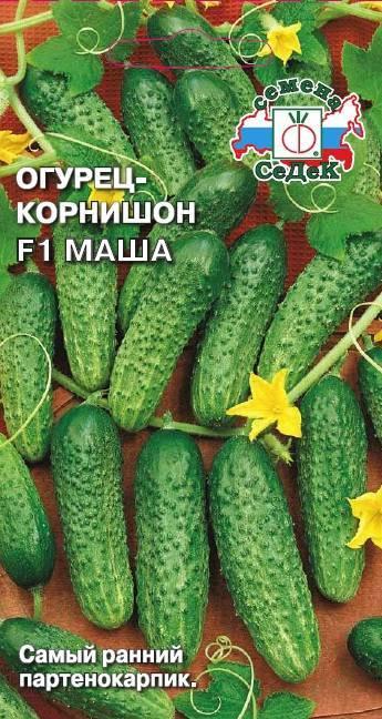 Сорт огурцов мирабелла f1: описание и характеристика, выращивание и уход
