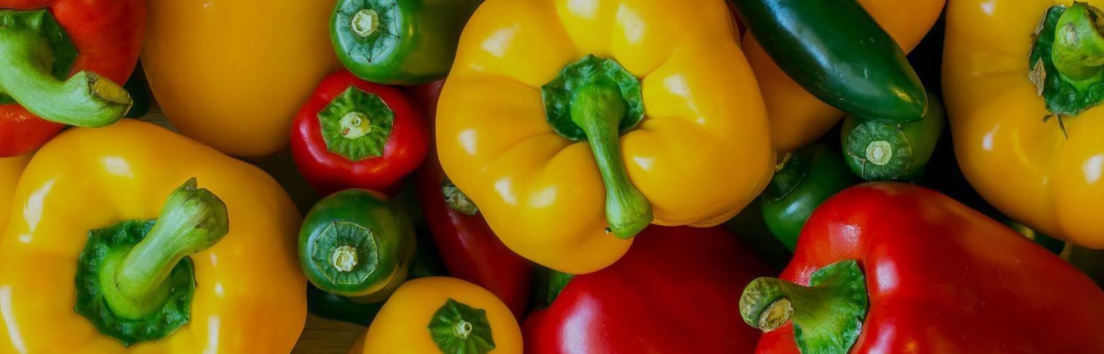 Яркие грядки — сладкий перец сорта гигант красный f1