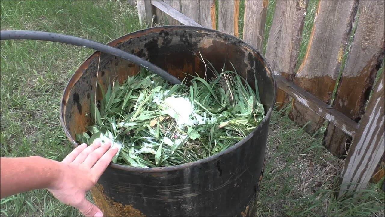Как сделать удобрение из травы и сорняков. идеальное решение - и сад чист, и помидоры довольны!   красивый дом и сад