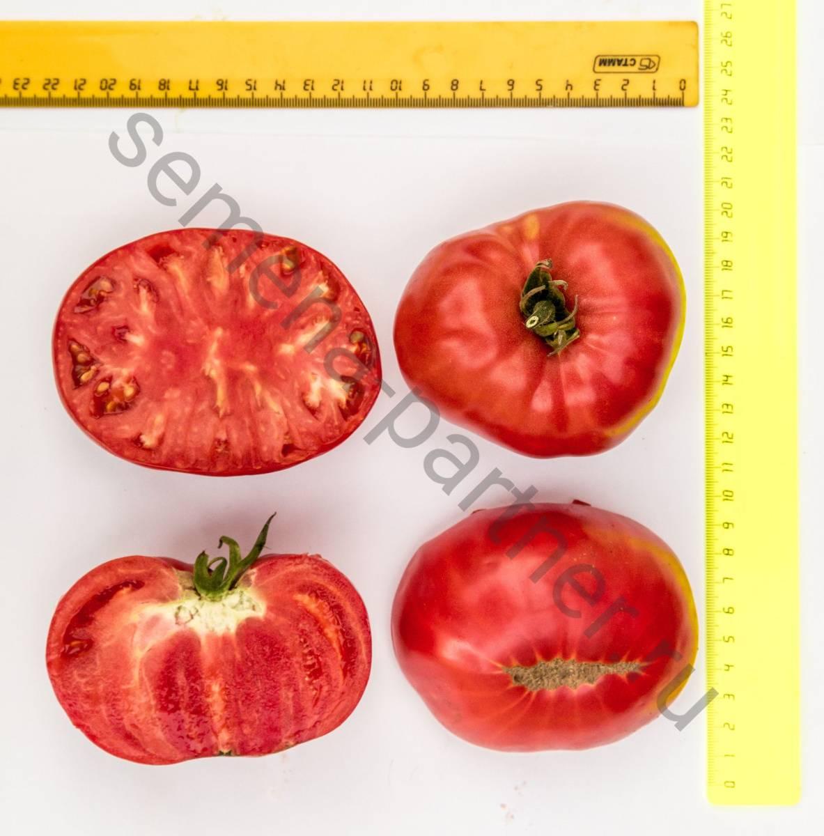 Томат гордость застолья: фото, урожайность, отзывы, характеристика и описание сорта