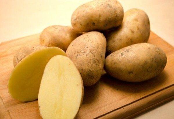 Сорт картофеля колетте: описание, посадка и уход