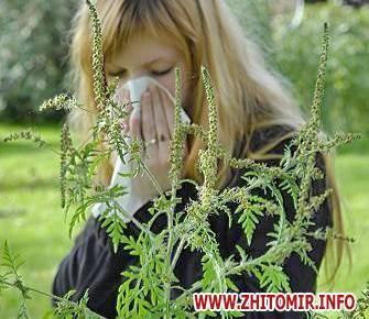 Вызывают ли дыни аллергию у детей
