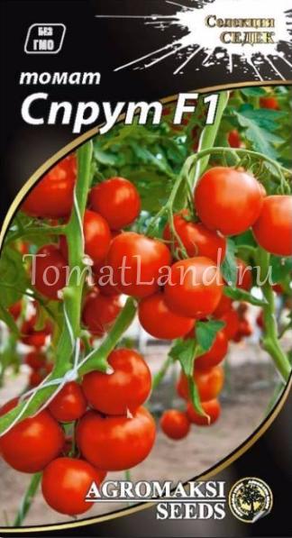 Томат f1 «спрут черри»: описание сорта и особенности выращивания необычного помидора