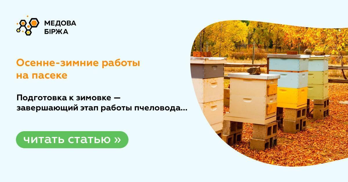 Окончательная подготовка пчел к зимовке в лежаках | практическое пчеловодство