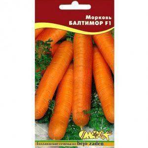 Морковь болеро f1 — описание сорта, фото, отзывы, посадка и уход
