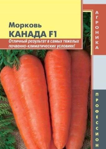 Морковь каскад — описание сорта, фото, отзывы, посадка и уход