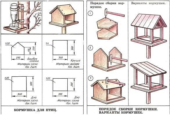 Кормушки для куриц: как сделать самодельные бункерные или деревянные конструкции для подачи еды своими руками