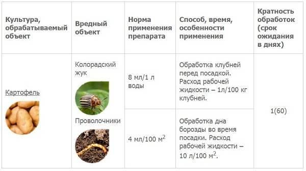Табу или престиж, что лучше от колорадского жука: отзывы реальных садоводов