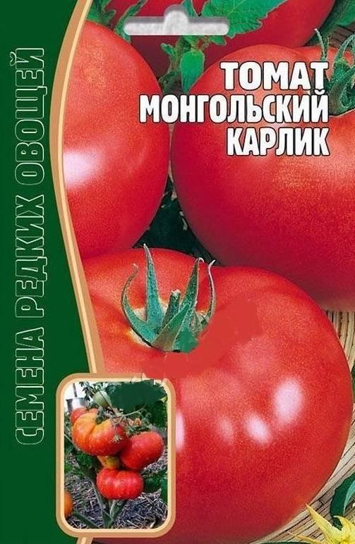 Описание и характеристика сорта помидоров монгольский карлик