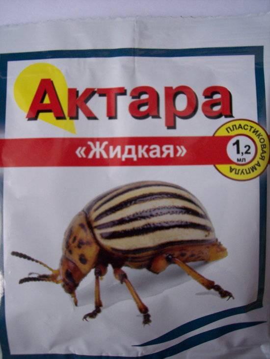 Инсектицид командор от колорадского жука: отзывы, инструкция по применению