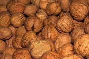 Хранение орехов фундука в домашних условиях (в скорлупе и очищенном виде)