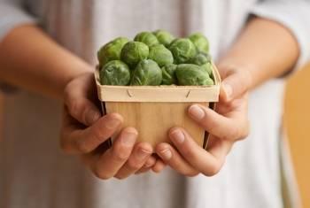 Брюссельская капуста – маленький, но удивительный овощ