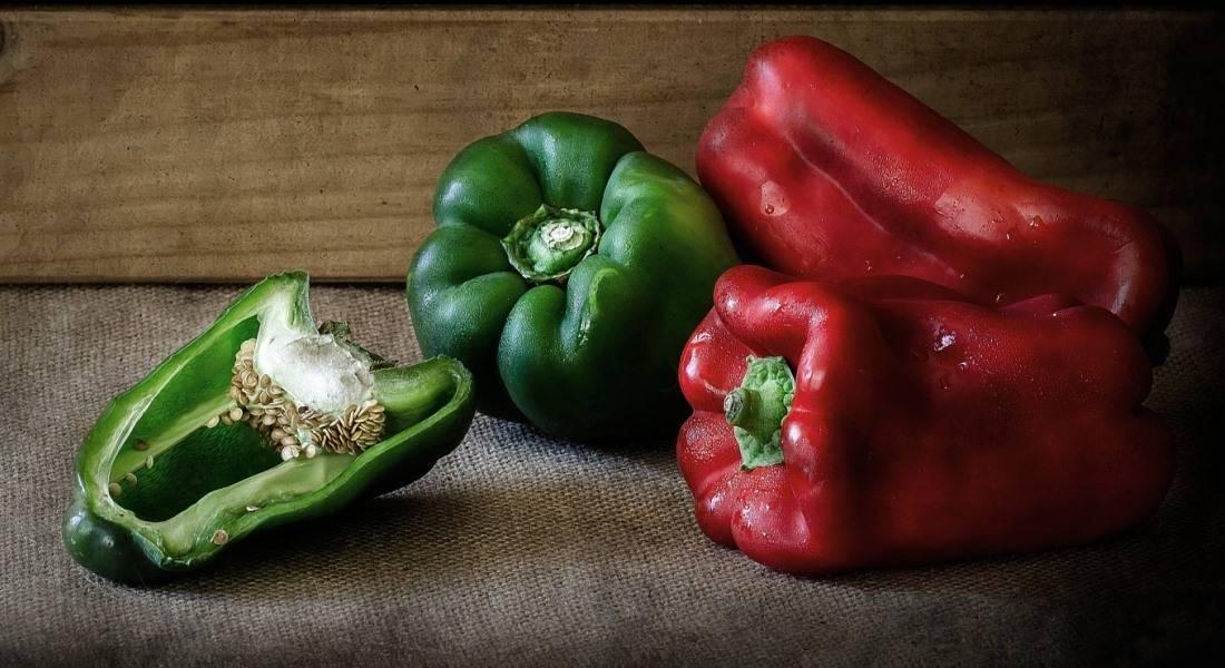 Как получить крепкую рассаду перца – пошаговый мастер-класс с фото