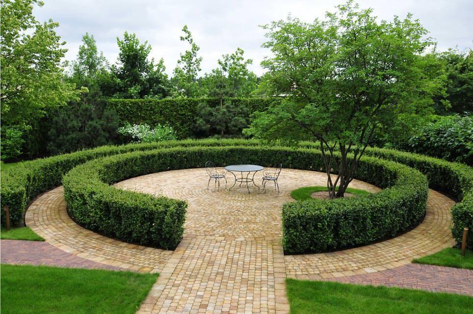 Кизильник горизонтальный – выступит настоящей изюминкой вашего сада