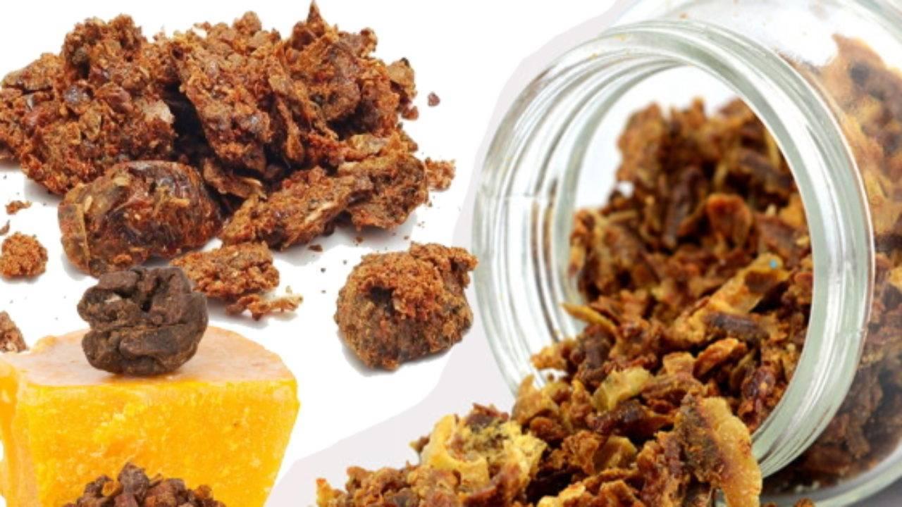 Лечение пчелиным клеем иприменение прополиса: бесконечный список целебных возможностей