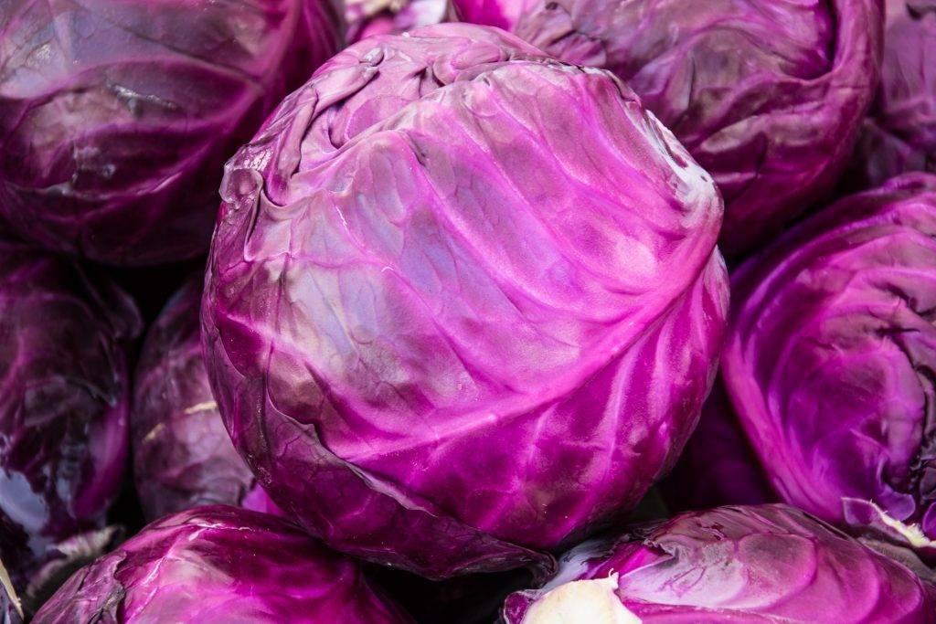 Белокочанная капуста: польза и вред, лечебные свойства | пища это лекарство