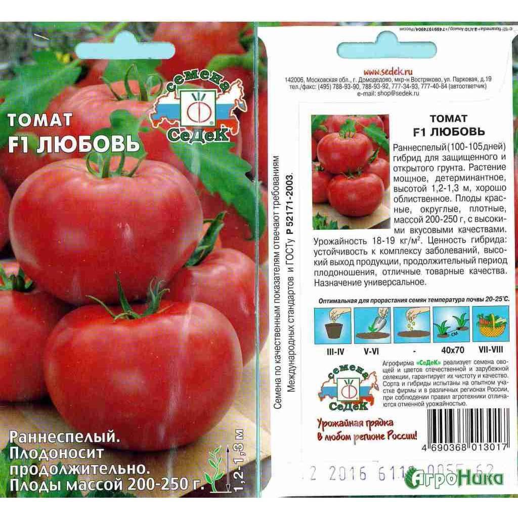 Обзор томата моя любовь