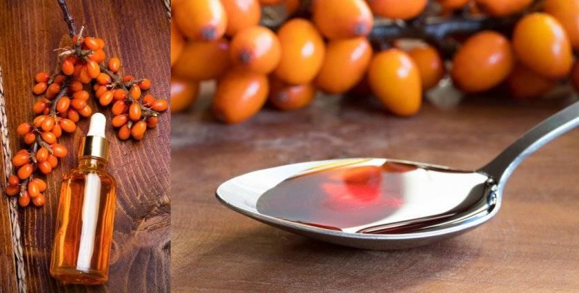Изготовление облепихового масла в домашних условиях: просто и быстро. лучшие рецепты натурального облепихового масла