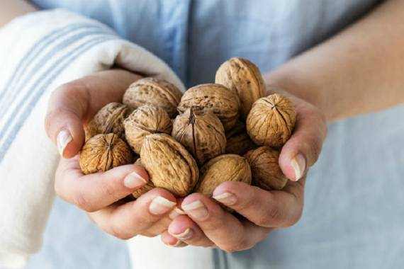 Грецкий орех: польза и вред для организма. состав, народные рецепты