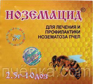 Болезни пчел: их признаки, лечение и профилактика