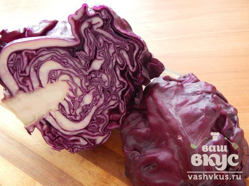 Польза и вред краснокочанной капусты для организма | польза и вред