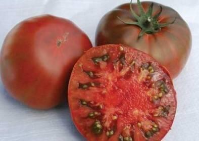 Сорт мясистый сахаристый – крупноплодный розовый томат великолепных вкусовых характеристик: описание и отзывы