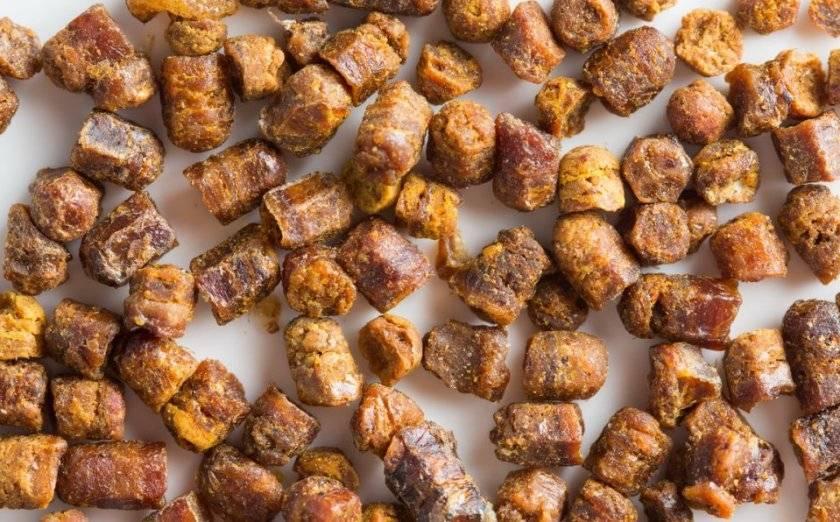 Срок годности и правила хранения перги пчелиной
