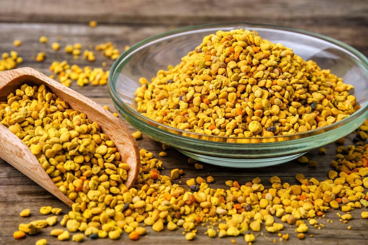 Пыльца пчелиная: полезные свойства и применение