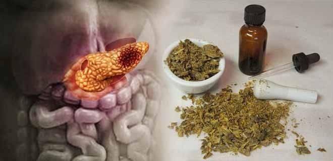 Лечение поджелудочной железы прополисом — что нужно знать