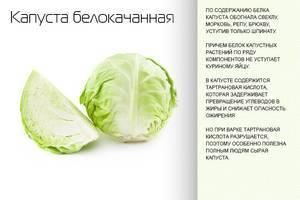 Капуста при беременности: можно ли есть этот овощ свежим, каковы ограничения, а также какое влияние оказывает на мать и ребенка, как лучше приготовить?