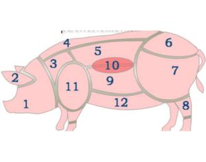 Части туши свиньи – схема, где находится корейка, рулька, вырезка и карбонад