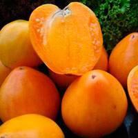 Томат медовый спас – сладкие плоды с гипоаллергенными качествами