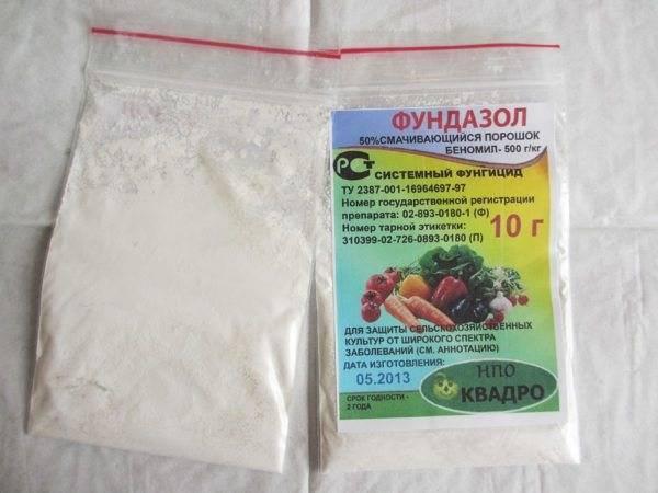 Препарат фундазол: применение для защиты комнатных растений