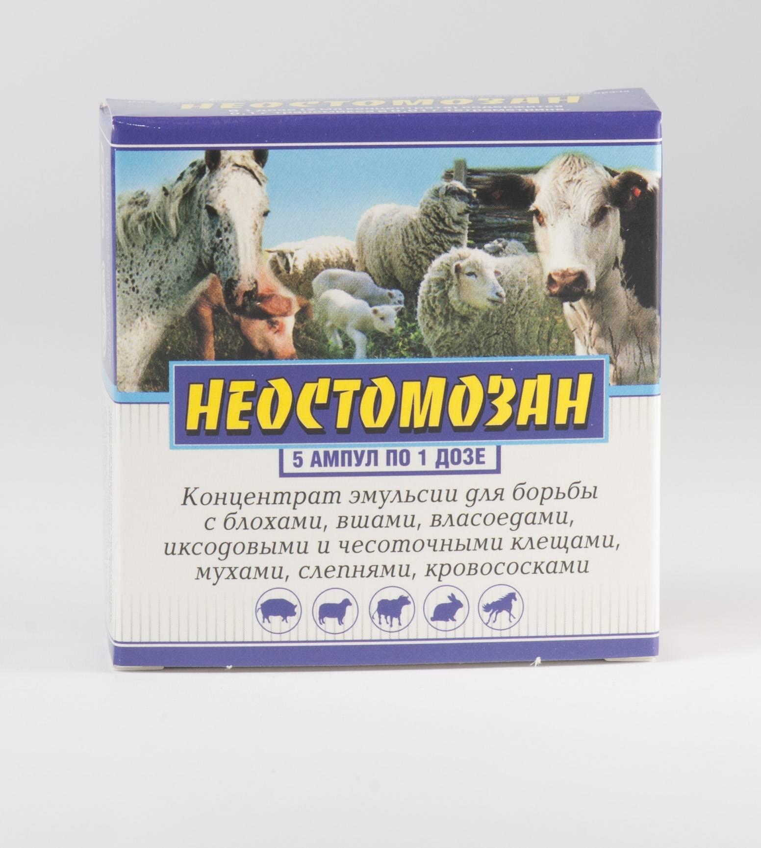 Лечение вшей у коров и телят