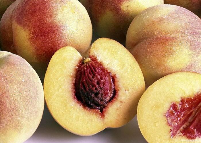 Как вырастить персик из косточки: особенности, уход, болезни