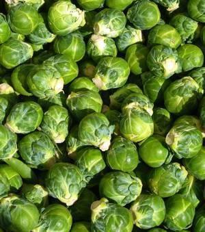 Брюссельская капуста — польза и вред, свойства и противопоказания