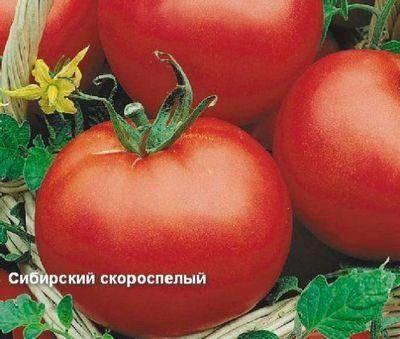 Томат сибирский козырь — описание и характеристика сорта