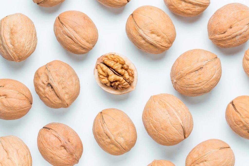 Польза и вред шелухи кедрового ореха